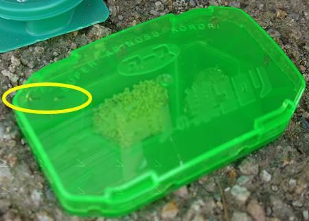 アリの巣コロリコンバットアリメツ比較12