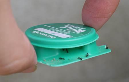 アリの巣コロリコンバットアリメツ比較11